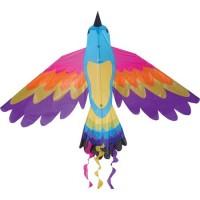 Bird Kite, Paradise
