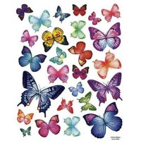 Vivid Butterflies Wall Decals
