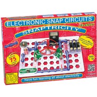 Snap Circuits Snaptricity