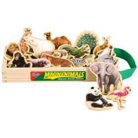 Wild Animals Wooden Magnets