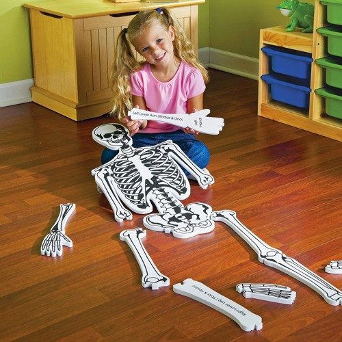 Skeleton Floor Puzzle A Mighty Girl