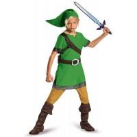 Classic Link Costume