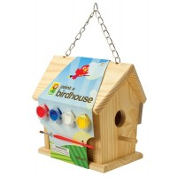 Paint-A-Birdhouse Kit
