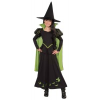 Wicked Witch 75th Anniversary Costume