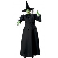 Elphaba /  Wicked Witch Costume