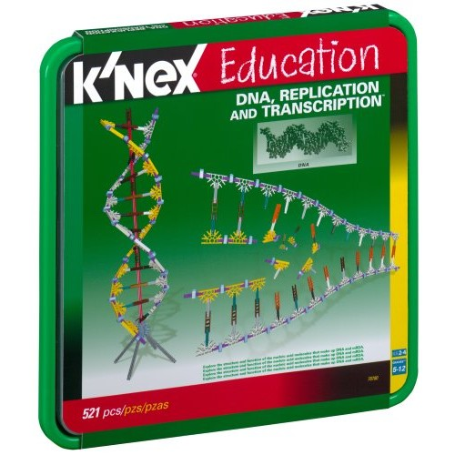 DNA, Replications and Transcription Set