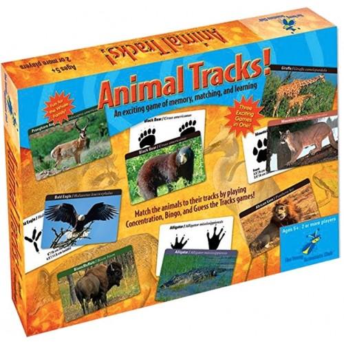 Animal Tracks Science Game