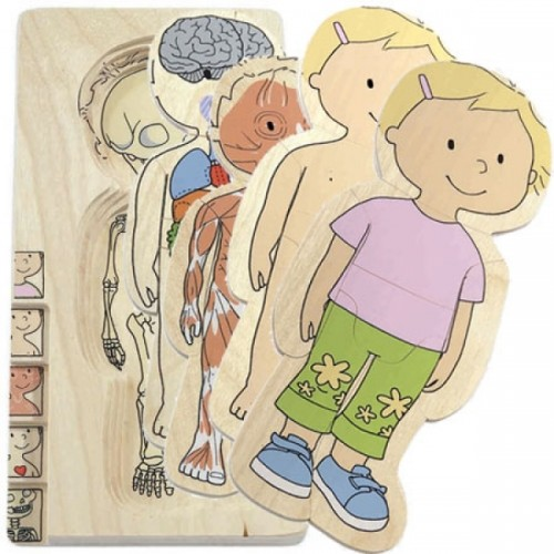 Your Body Layer Puzzle