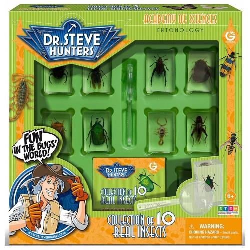 Bug World Collection