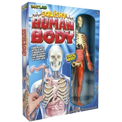 You Explore It: Human Body